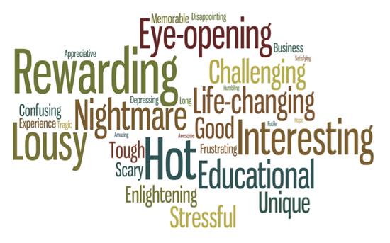 Welches Wort gebrauchten die Soldaten am häufigsten für ihre Beschreibung des Afghanistankriegs